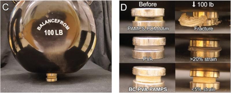 test résistance hydrogel cartilage