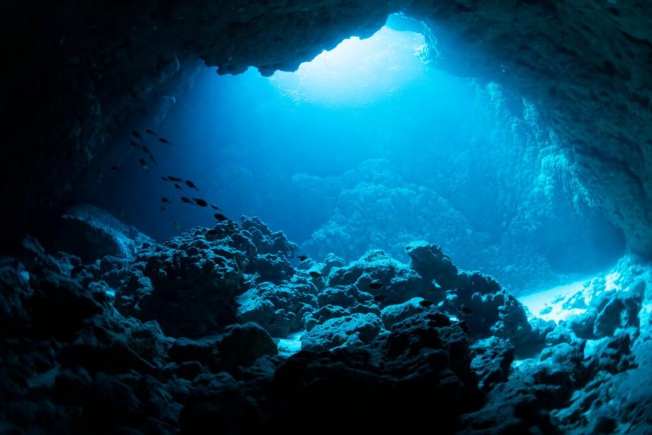 fosse mariannes abyssale plaine ocean