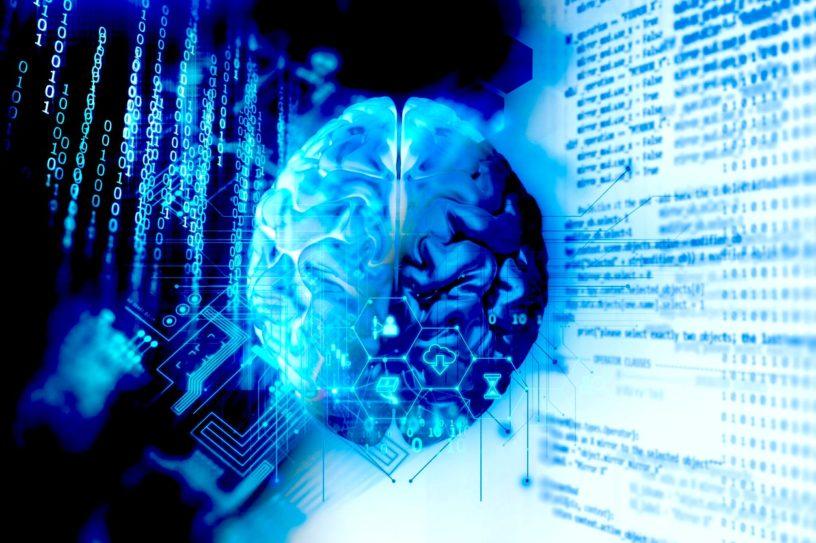 cerveau atlas human brain project