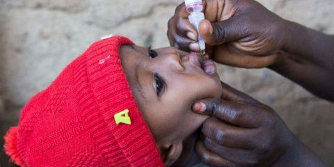 eradication poliovirus sauvage afrique