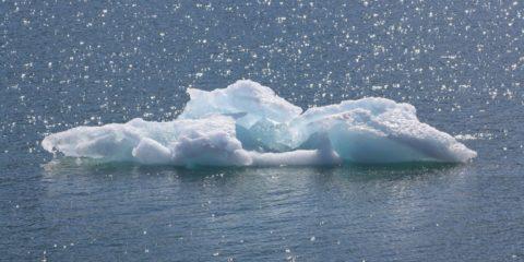 fonte glace banquise arctique 2035