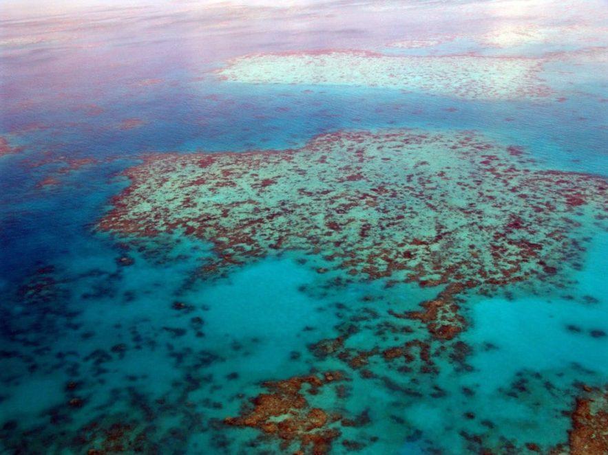 grande barrière corail roche volcanique