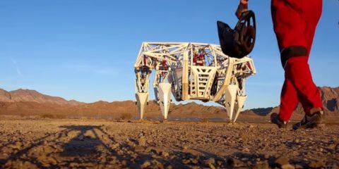 exosquelette mech ligue course mondiale sports mécaniques