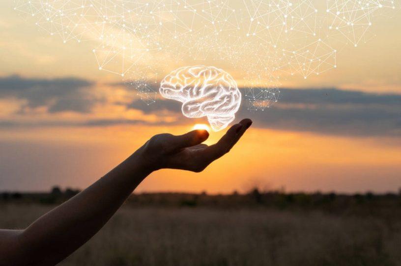 cerveau effets meditation pleine conscience depression anxiete