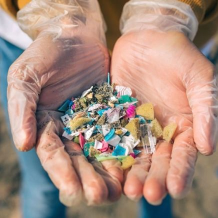 plastique sante