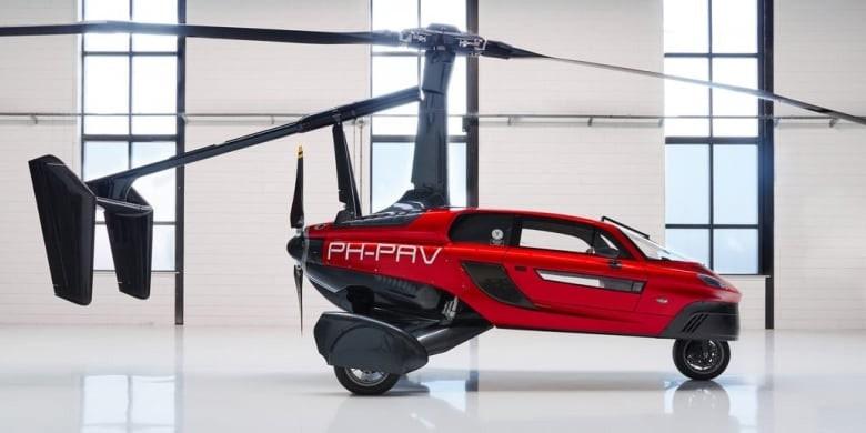 voiture volante pal-v