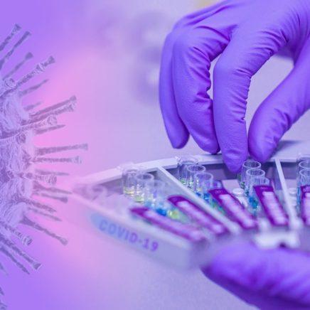 chercheurs rejettent nouvelles affirmations coronavirus cree laboratoire