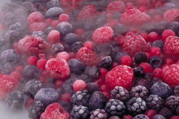 cryogenie aliments 2020