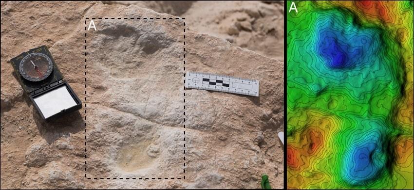 empreinte humaine pas fossilisée modèle élévation