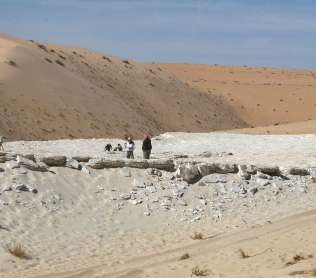 empreintes humaines pas fossilisées 120000 ans Arabi Saoudite