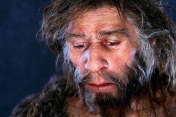 étendue intelligence capacités cognitives homme néandertal