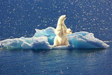 fonte calottes glaciaires correspondent pires scenarios-modeles climatiques