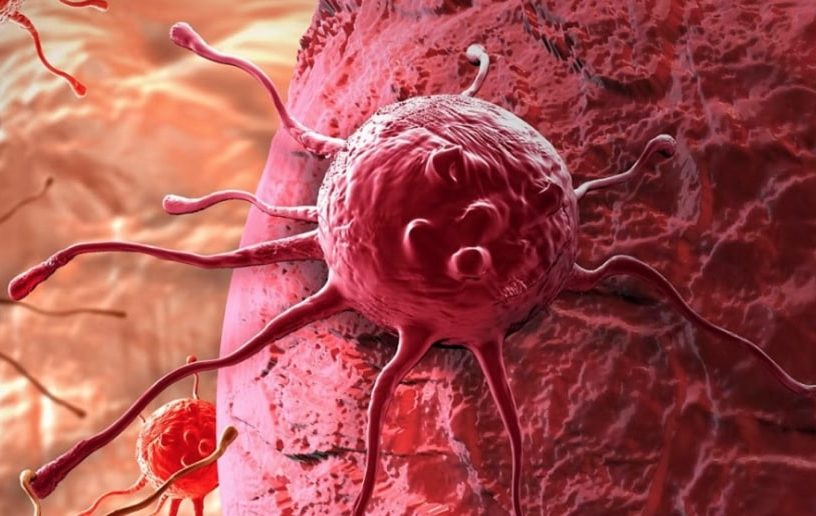 nouveau traitement expérimental détruit cellules cancéreuses sans médicament couv