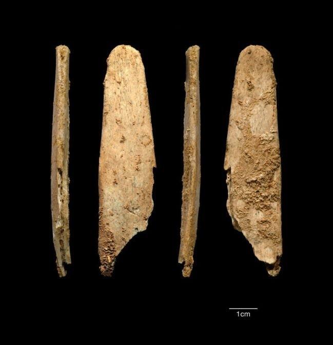 outils homme néandertal os lissoir
