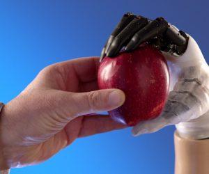 prothese main biomimetique similaire main humaine hannes