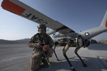 test chiens robots armée air américaine