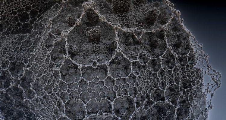 theorie-univers-reseau-neuronal-750x400.jpeg