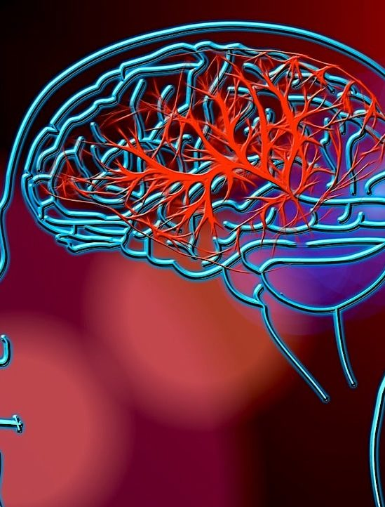 cause maladie alzheimer attribuee mutation enzyme commune