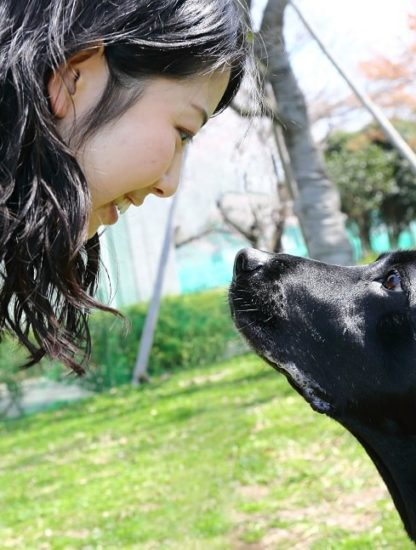 cerveau chiens préoccupe pas visages couv
