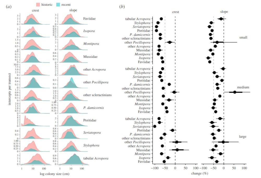 changements populations coraux