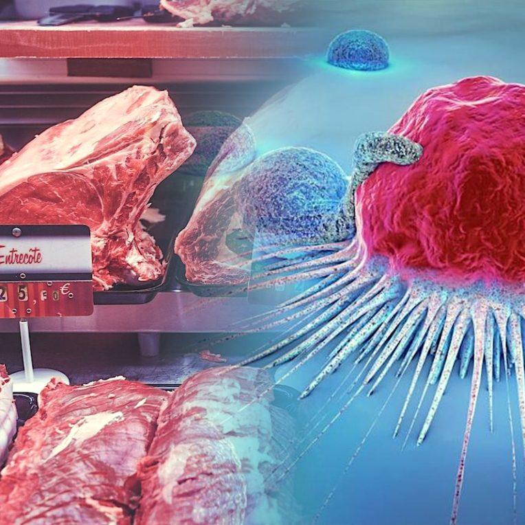 decouverte lien moleculaire entre alimentation et risque cancer