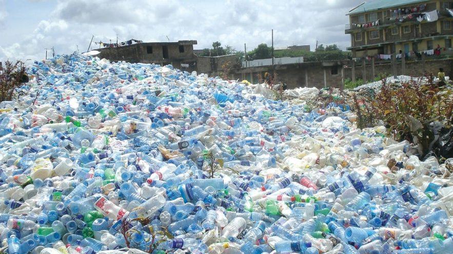 duo enzymes bactériennes super efficaces décomposition plastique couv