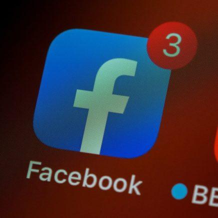 facebook interdiction négationnisme holocauste