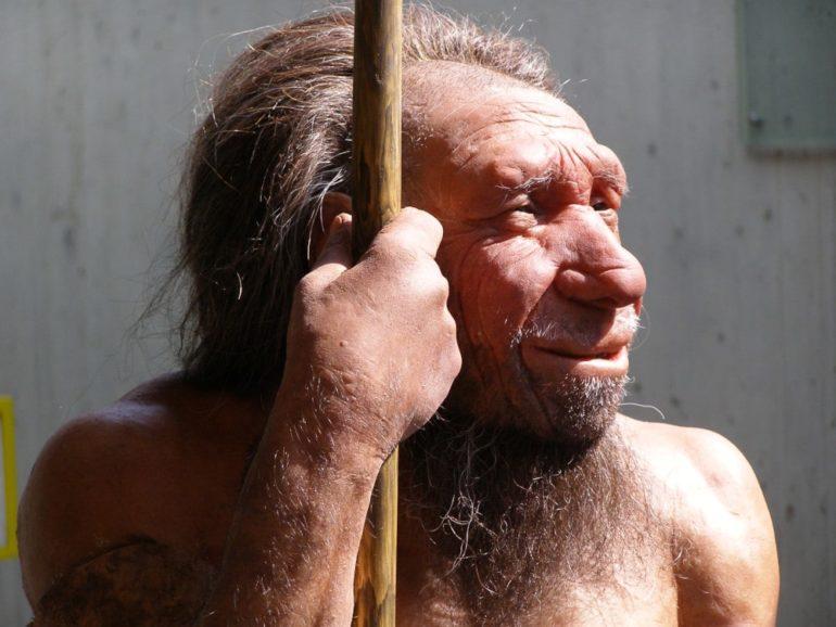 covid-19 grave héritage génétique néandertal
