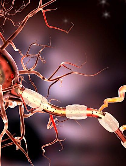 hydrogel conducteur pour guerir lesions nerveuses