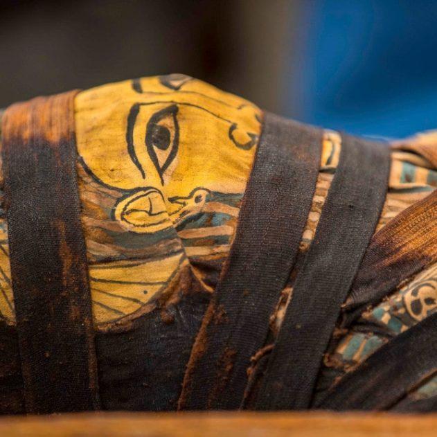 momie découverte égypte saqqarah