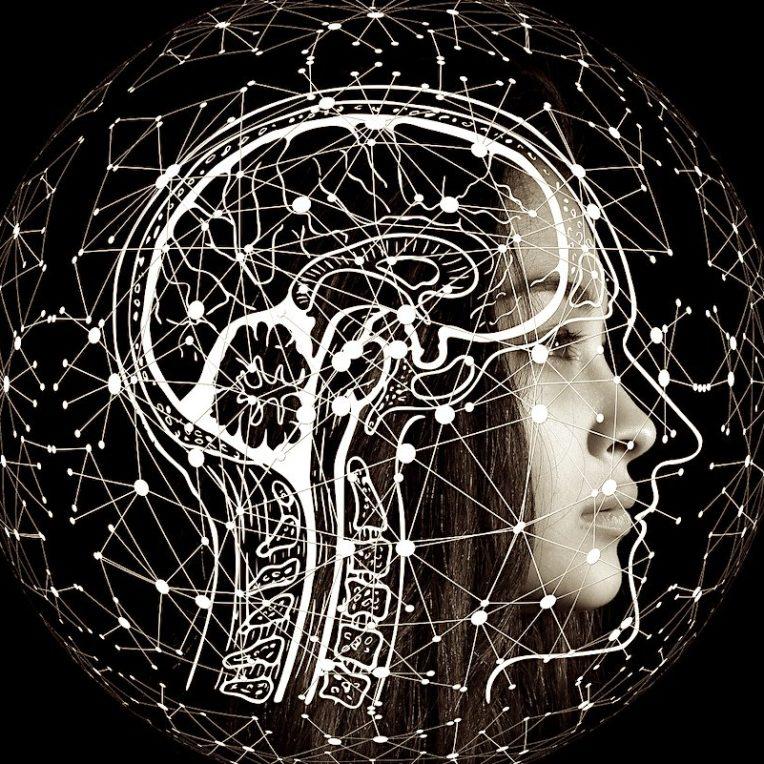 personnalite curieuse explications dopamine