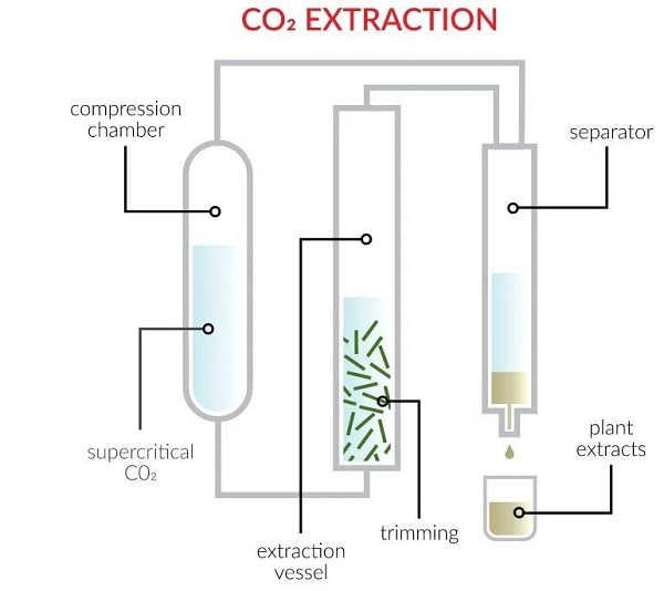 processus extraction huile cbd chanvre co2