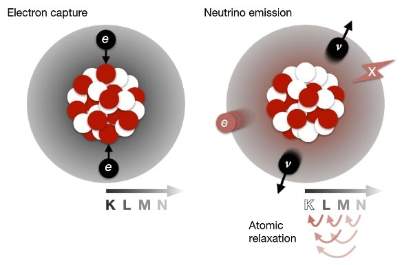 schéma double capture électrons deux neutrinos