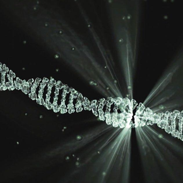transport outils édition gènes CRISPR vivo