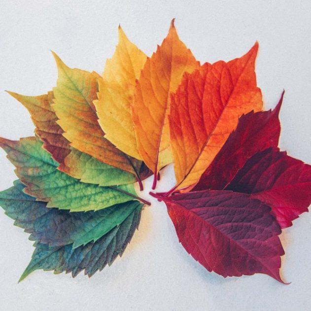 variation marqueurs biologiques saisons