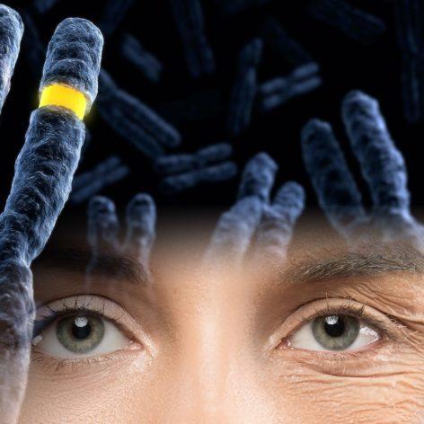 chercheurs ont partiellement inverse processus vieillissement cellulaire homme