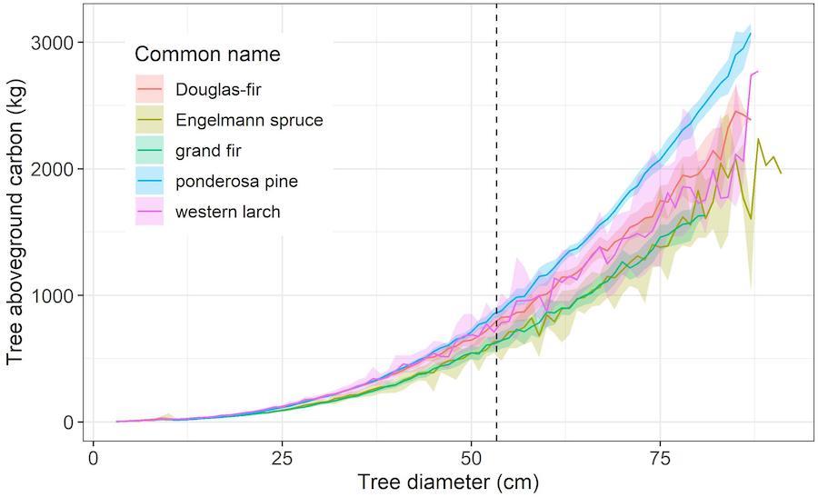 graphique diametre arbres carbone stocke