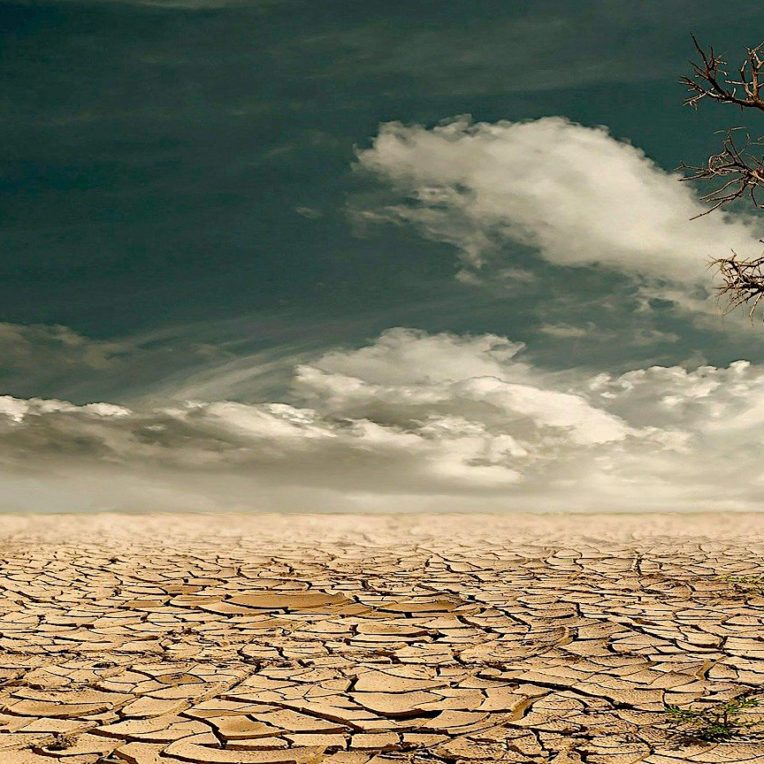 rechauffement climatique pourrait liberer milliards tonnes carbone sol