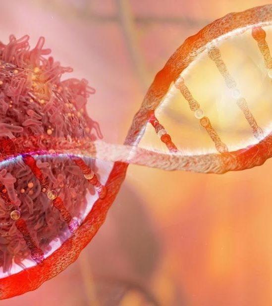 technologie basse crispr detruit efficacement cellules cancereuses couv