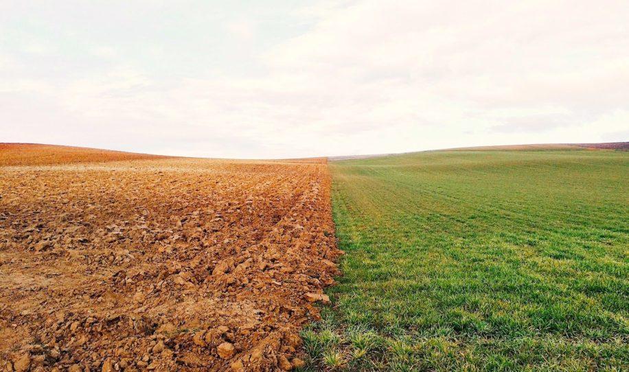 terre auto arrosante pourrait transformer agriculture