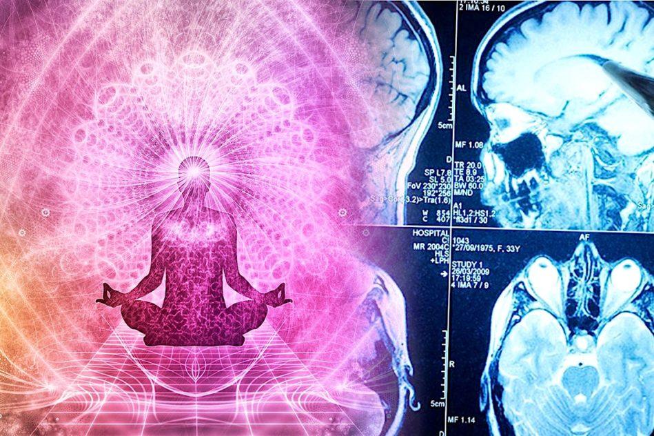 yoga renforce regions cerveau touchees par vieillissement