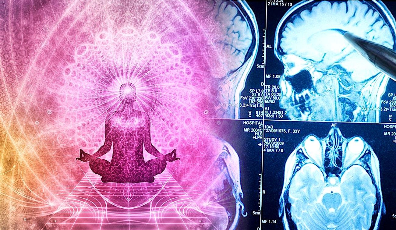 Le yoga peut renforcer les régions du cerveau les plus touchées par le vieillissement