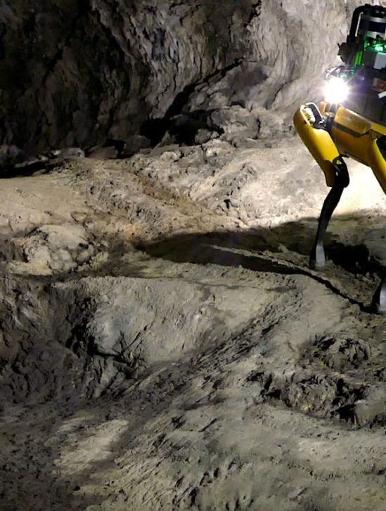 chien robot boston dynamics au-spot exploration mars