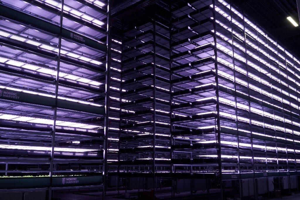 etageres ferme verticale danemark