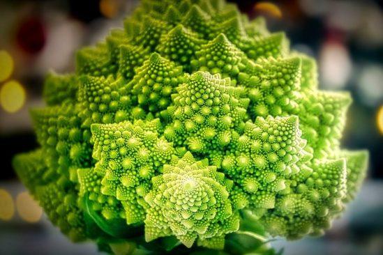 etude revele enfants 3 ans preferent motifs fractals nature