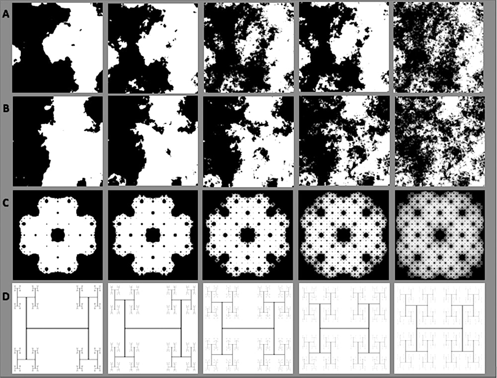exemples dessins fractals etude enfants nature