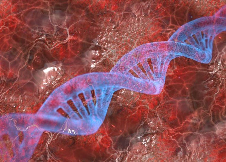 gènes cas sévères covid-19