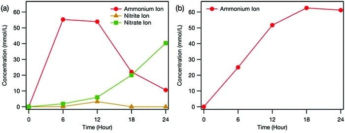 graphique evolution concentration ions ammonium