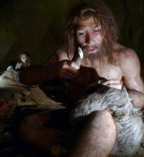 indices hibernation hominidés