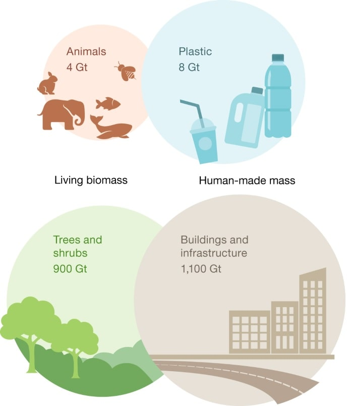 masse categories animaux plastiques arbres infrastructures